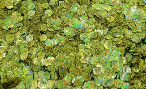 Gold Fever Biocompostable Glittermix